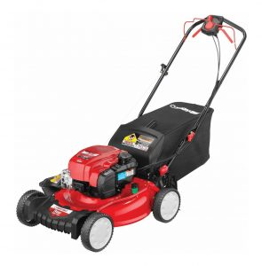 Top 10 Best Self-Propelled Mowers for 2020 Reviews