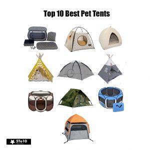 Top 10 Best Pet Tents In 2019 Reviews