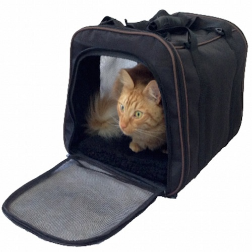 Top 10 Best Pet Carrier Soft Sided Reviews in 2019
