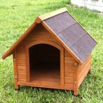Top 10 Best Dog House Reviews