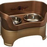 Top 10 Best Elevated Dog Bowls Reviews
