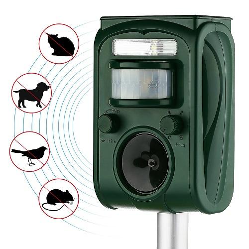 Best Motion Sensor Sprinklers For Your Lawn