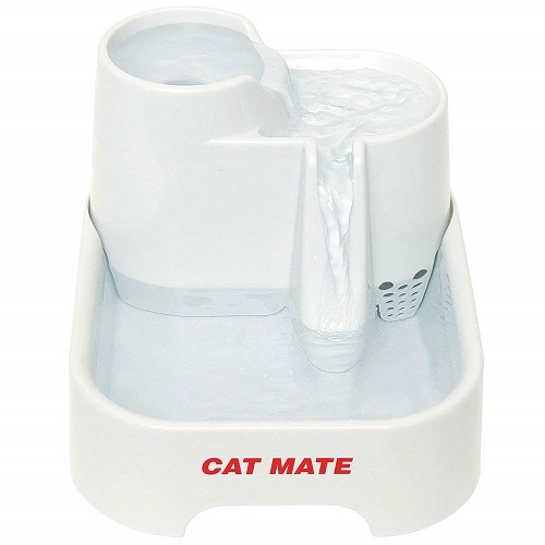 Finding the Right Cat Water Fountain Your Cat Will Love