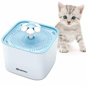 The Best Water Fountain For You Lovely Cats Reviews