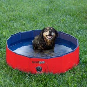 Top 10 Best Foldable Dog Pools Choices For Summer In 2019