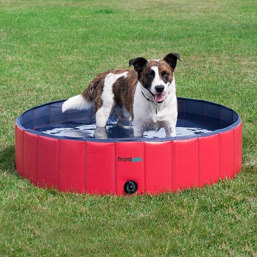 Top 10 Best Foldable Dog Pools Choices For Summer In 2020