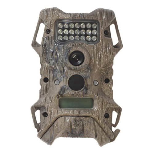 10 Best Cheap Trail Cameras Reviews
